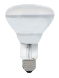 SYL 65BR30/FL 120V LAMP CS=24 15165
