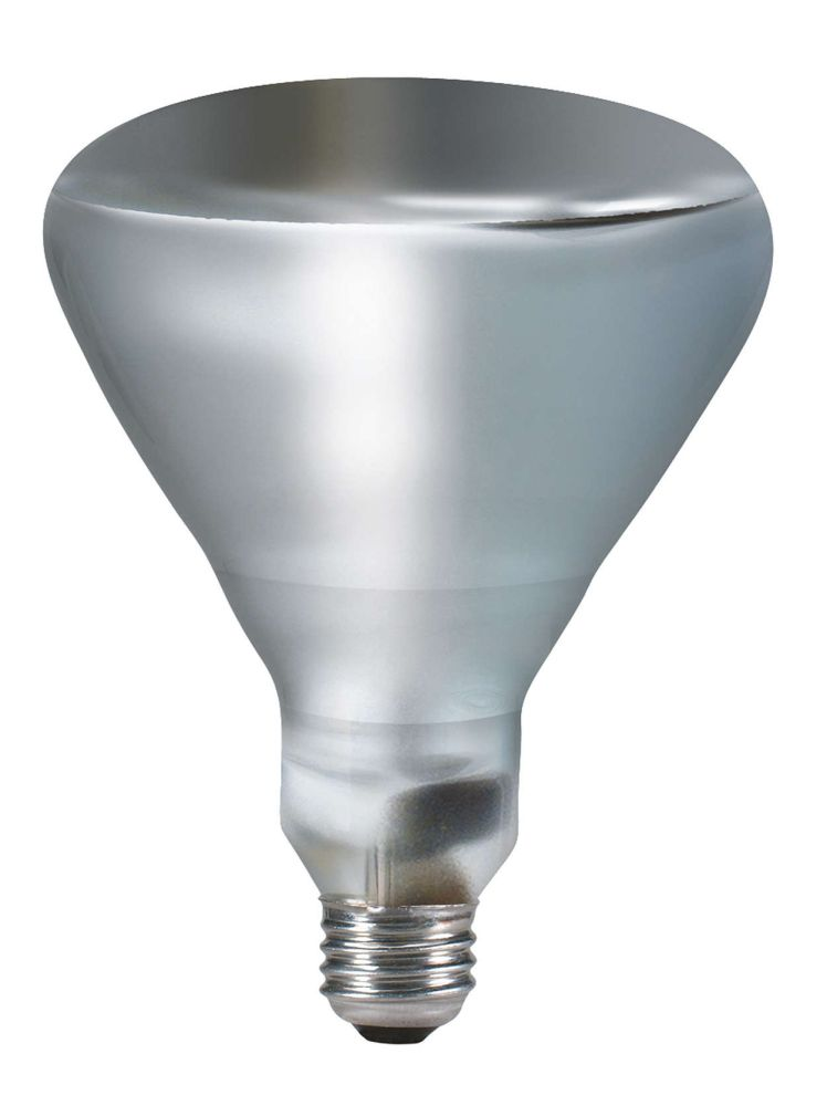 Philips Lighting 202051 - 250BR40/1/TG120V4/1