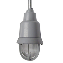 Eaton Crouse-Hinds Series,EVIBH2301,Bussmann EVI Explosionproof Luminaire With EV505 Guard, Incandescent Lamp, 120 VAC, Epoxy Powder Coated Housing