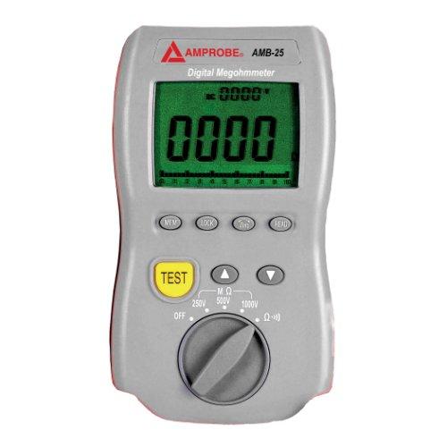 Fluke AMB-25 1000 VDC Insulation Resistance Tester