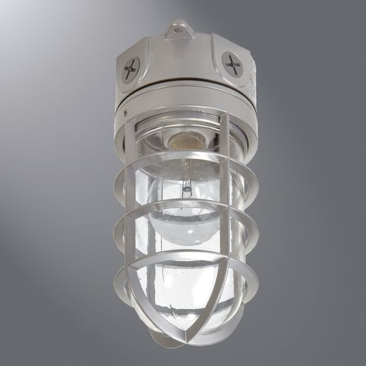 VT100G NCI 100W VAPOR TIGHT LIGHT