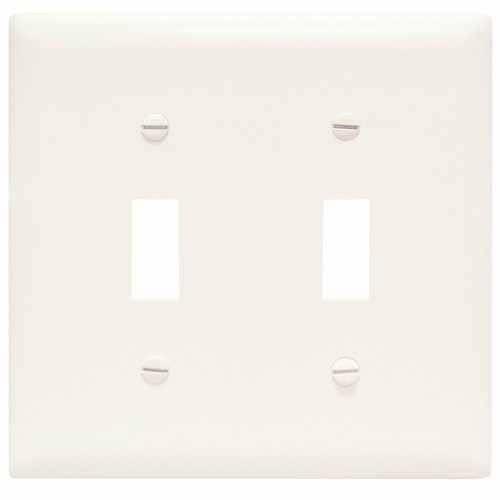 P&S TP2-W * NYLON WHT 2G 2 TOGGLE WHITE PLATE