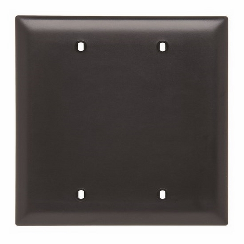 Pass & Seymour TP23-BK 2-Gang Blank Black Nylon Standard Unbreakable Wallplate