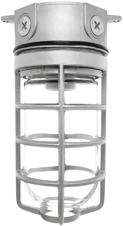 RAB VX100DG VAPORPROOF 100 CEILING FIXTURE - BOX MOUNT; WITH GLASS GLOBE CAST GUARD CS=12