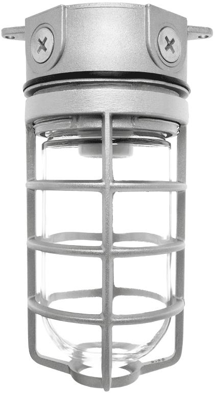 RAB VX100DG VAPORPROOF 100 CEILING FIXTURE - BOX MOUNT; WITH GLASS GLOBE CAST GUARD CS=12