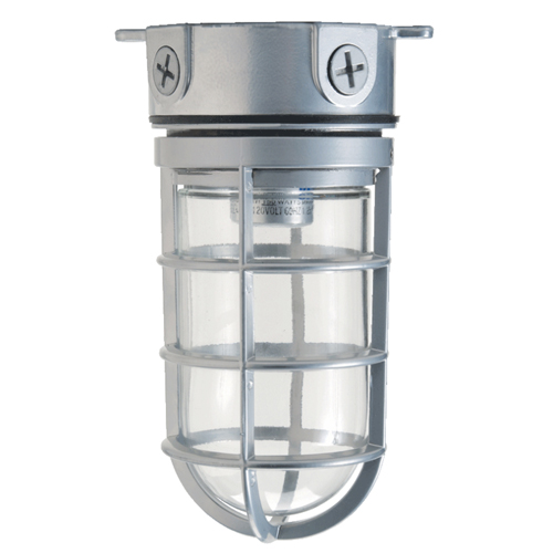 Hubbell Lighting Outdoor,VBGG-150,Hubbell® VBGG-150 Globe and Guard