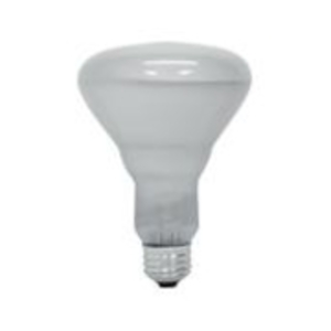 GEL 65R30/SP/MI-6PK-120 20332 INCANDESCENT LAMPS